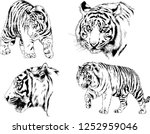 set of vector drawings on the... | Shutterstock .eps vector #1252959046