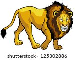 lion panthera leo side view...