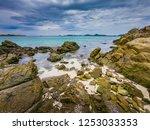 tropical beach  stone and beach ... | Shutterstock . vector #1253033353