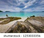 tropical beach  stone and beach ... | Shutterstock . vector #1253033356