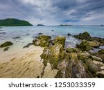 tropical beach  stone and beach ... | Shutterstock . vector #1253033359