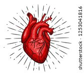 heart. vector illustration with ... | Shutterstock .eps vector #1253041816