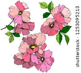 vector pink rosa canina. floral ... | Shutterstock .eps vector #1253095213