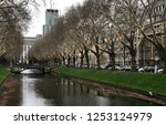 view of the historic plane tree ... | Shutterstock . vector #1253124979