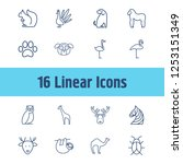 animal icon set and camel with...
