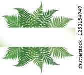 fern frond frame vector... | Shutterstock .eps vector #1253154949