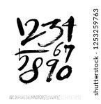 vector fonts   handwritten...   Shutterstock .eps vector #1253259763