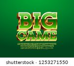 vector chic sign big game....   Shutterstock .eps vector #1253271550