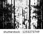 abstract background. monochrome ... | Shutterstock . vector #1253273749