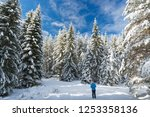 walking in snow winter forest | Shutterstock . vector #1253358136