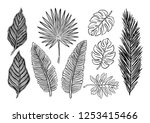 tropical plants. vector... | Shutterstock .eps vector #1253415466