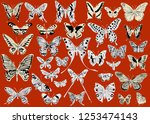 illustration with different... | Shutterstock .eps vector #1253474143