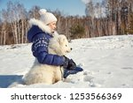 dog breed samoyed husky with... | Shutterstock . vector #1253566369