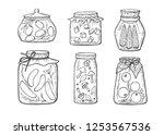 vector illustration of homemade ...   Shutterstock .eps vector #1253567536