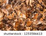 Soaked Dried Mushrooms.mushroo...