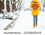 woman walking by snowed city... | Shutterstock . vector #1253600143