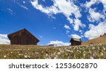 mountain cabins in the... | Shutterstock . vector #1253602870