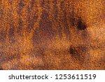 rust on metallic surface.... | Shutterstock . vector #1253611519