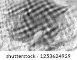 abstract background. monochrome ... | Shutterstock . vector #1253624929