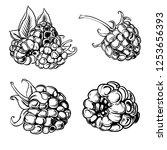 illustration set of drawing... | Shutterstock .eps vector #1253656393