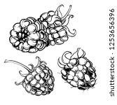 illustration set of drawing... | Shutterstock .eps vector #1253656396