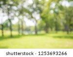 abstract blur city park bokeh... | Shutterstock . vector #1253693266