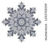 ornamental white   black vector ... | Shutterstock .eps vector #1253703559