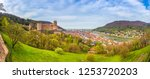 panoramic view of the old town... | Shutterstock . vector #1253720203