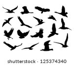 Stock vector collection of birds vector eps 125374340