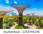 singapore   june 23  2018 ... | Shutterstock . vector #1253796190