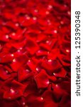 Stock photo background of beautiful red rose petals 125390348