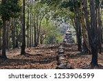 sukhothai  thailand  apr 25  ... | Shutterstock . vector #1253906599