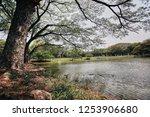 sukhothai  thailand  apr 25  ... | Shutterstock . vector #1253906680