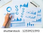 businessman working data... | Shutterstock . vector #1253921593