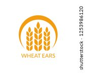 wheat ears logo. rye icon. | Shutterstock . vector #1253986120