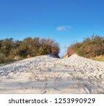 island of hiddensee  off the... | Shutterstock . vector #1253990929