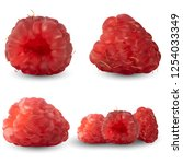set of realistic raspberries...   Shutterstock .eps vector #1254033349