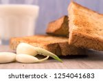 toasted bread slices with... | Shutterstock . vector #1254041683