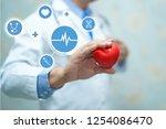asian smart man doctor holding...   Shutterstock . vector #1254086470