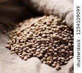 raw healthy brown lentil ... | Shutterstock . vector #1254109099