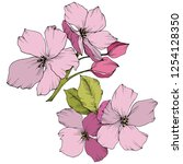 appe blossom flowers. pink and... | Shutterstock . vector #1254128350