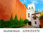 exterior wall of the alcazar in ... | Shutterstock . vector #1254151570
