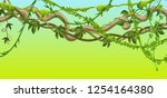 twisted wild lianas branches... | Shutterstock .eps vector #1254164380