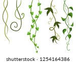 twisted wild lianas branches... | Shutterstock .eps vector #1254164386