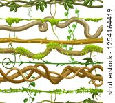 twisted wild lianas seamless... | Shutterstock .eps vector #1254164419