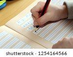 first grader learns writing | Shutterstock . vector #1254164566