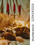 christmas and new year's winter ... | Shutterstock . vector #1254192223