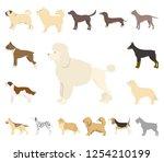 dog breeds cartoon icons in set ...   Shutterstock .eps vector #1254210199