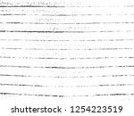 vector grunge textile... | Shutterstock .eps vector #1254223519