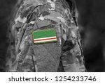 flag of chechen republic of... | Shutterstock . vector #1254233746